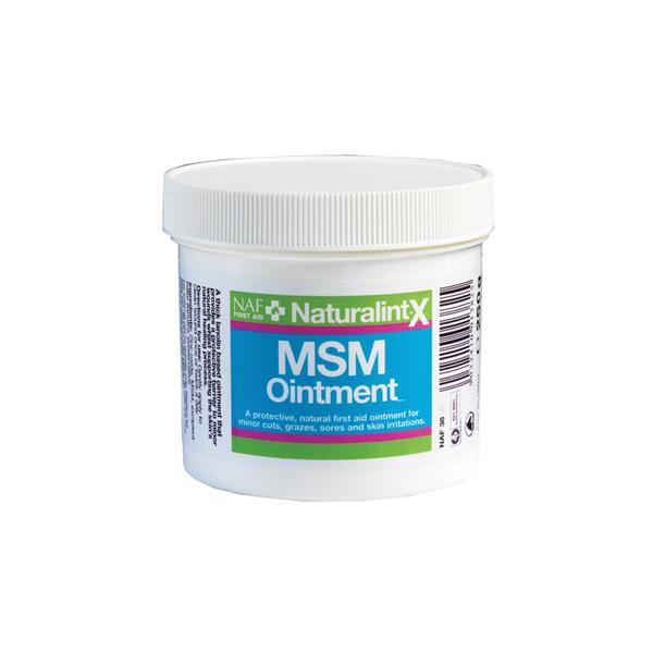 NaturalintX MSM Salva